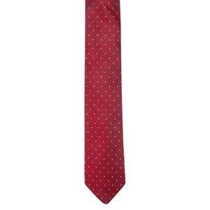 Ryan Seacrest Distinction Tie